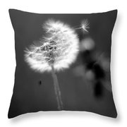 Dandelion Puff In Black And White Throw Pillow