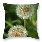 Dandelion Seed Heads Throw Pillow