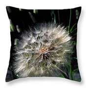 Dandelion Seedball Throw Pillow