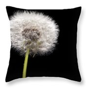 Dandelion Seedhead Throw Pillow