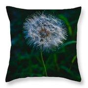 Dandelion Seeds 2 Throw Pillow