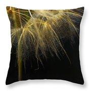 Dandelion Seventy Four Throw Pillow