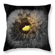 Dandelion Spotlight Throw Pillow