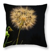 Dandelion Thirty Nine Throw Pillow