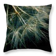 Dandelion Thirty Seven Throw Pillow