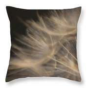 Dandelion Twenty Throw Pillow