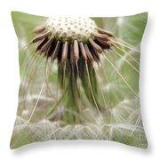 Dandelion Wish 8 Throw Pillow