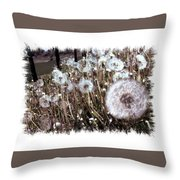 Dandelion Wishes Throw Pillow by Myrna Migala