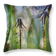 Dandelions Close-up Throw Pillow
