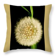 Dandelion's Seed Head. Throw Pillow