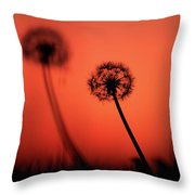 Dandelions Silhouettes At Sunset Throw Pillow