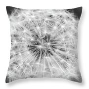 Dandylion Black And White Throw Pillow