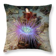 Dangerous Underwater Flower Throw Pillow