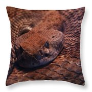 Dangerously Handsome Throw Pillow