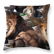 Daniel In The Lion Throw Pillow
