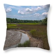 Daniel Island Paradise Throw Pillow