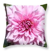Danielle's Dahlia Throw Pillow