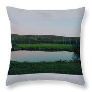 Daniels Conservation  Throw Pillow