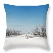 Daniel's Park Winter Scene Throw Pillow