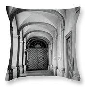 Danish Vault Throw Pillow