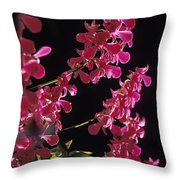 Danrobium Orchids Used To Make Lais Throw Pillow