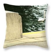 Danube River Swan Throw Pillow