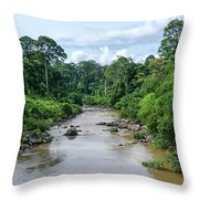Danum Valley Throw Pillow