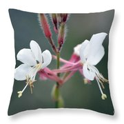 Danza De Angeles Throw Pillow