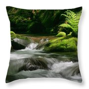 Dappled Green Throw Pillow