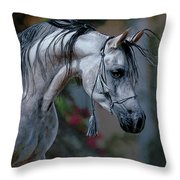 Dappled Grey Throw Pillow