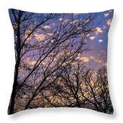 Dappled Sunset-1547 Throw Pillow