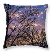 Dappled Sunset-1547 Throw Pillow