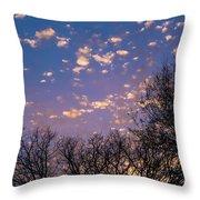 Dappled Sunset-1548 Throw Pillow
