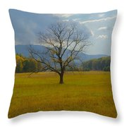 Dare To Stand Alone Throw Pillow by Michael Peychich