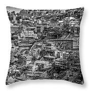 Darjeeling Monochrome Throw Pillow