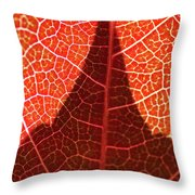 Dark And Bright Throw Pillow