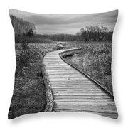 Dark Appalachian Trail Throw Pillow