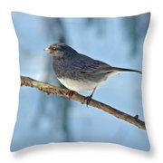 Dark-eyed Junco Or Snowbird - Junco Hyemalis Throw Pillow