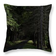 Dark Forest Road Throw Pillow
