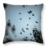 Dark Knights Throw Pillow