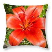 Dark Orange Red Lily II Throw Pillow