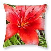 Dark Orange Red Lily Throw Pillow