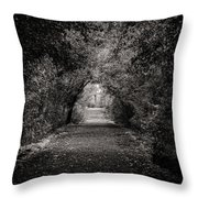 Dark Path In Black And White Throw Pillow