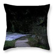 Dark Path Throw Pillow