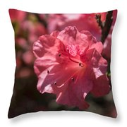 Dark Pink Azalea Throw Pillow