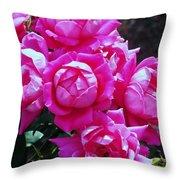 Dark Pink Roses Throw Pillow