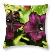 Dark Purple Petunia Throw Pillow