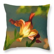 Dark Red Day Lily With Sun Shining Through I Abstract I Throw Pillow