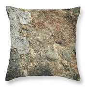 Dark Sandstone Surface With Moss Throw Pillow