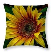 Dark Sunflower Throw Pillow